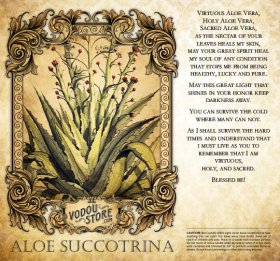 7-Day Candle Label - Aloe Succotrina