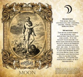 7-Day Candle Label - Luna (Moon)